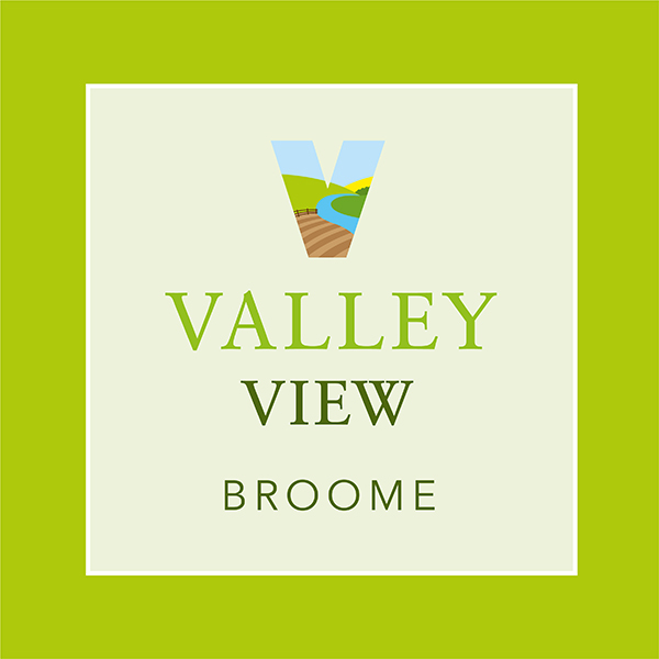 Badger Building Valley View Logo